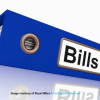 BillingViews Finds 15% of US Mobile Users Ready to Adopt Direct-to-Bill Mobile Payment